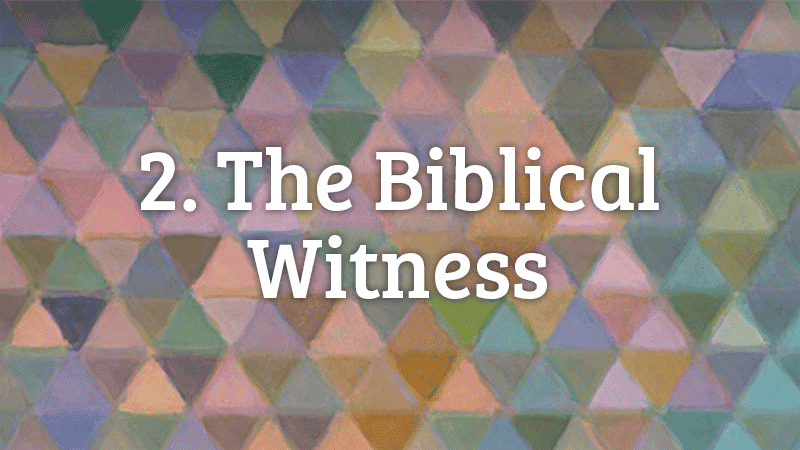 2. The Biblical Witness
