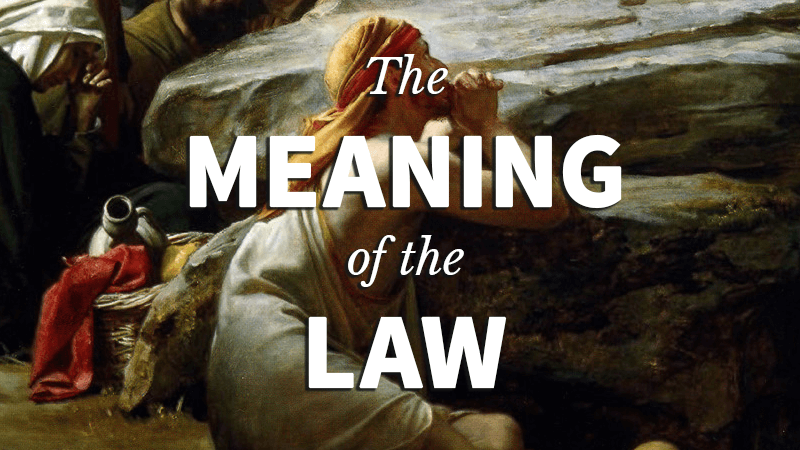 4. The Meaning of the Law