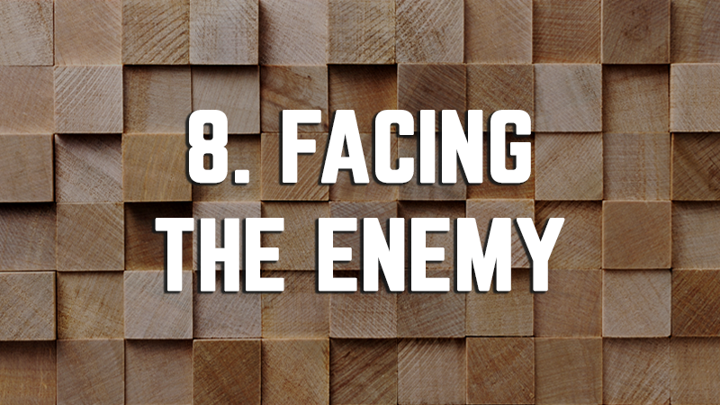 8. Facing the Enemy